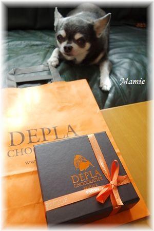 Belgian chocolate _d0387712_21501234.jpg