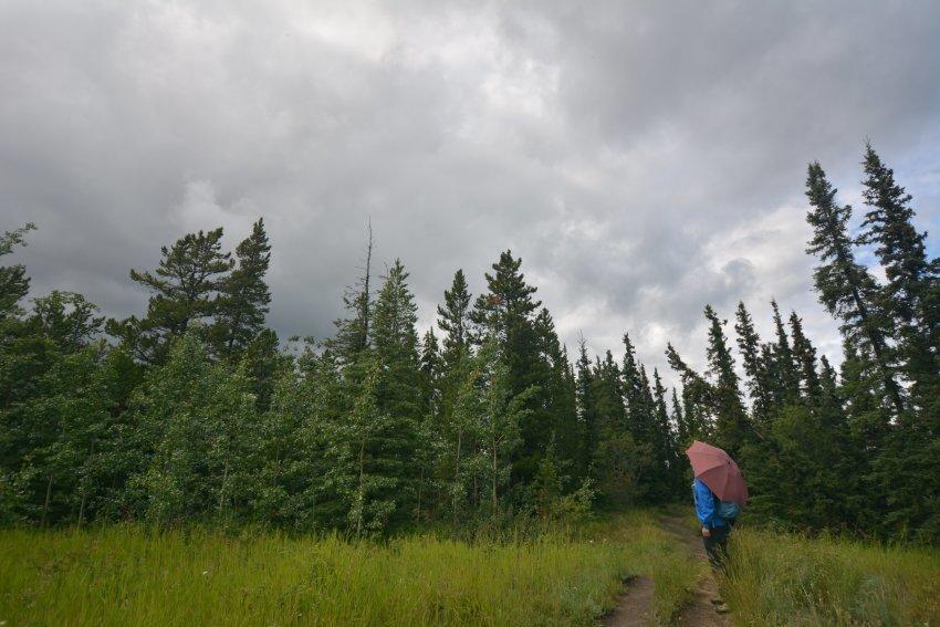 山行の準備を整えよう!カナダのハイキング 雨対策_d0112928_08313397.jpg