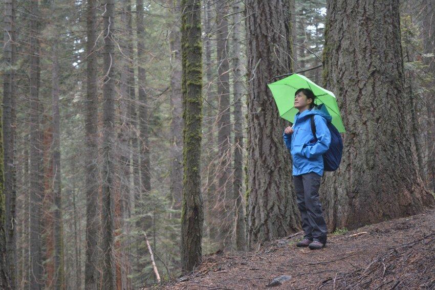 山行の準備を整えよう!カナダのハイキング 雨対策_d0112928_08381743.jpg