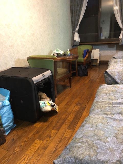 リゾートホテル「フッシュ」さんと森吉山ダム_b0031538_15170903.jpg