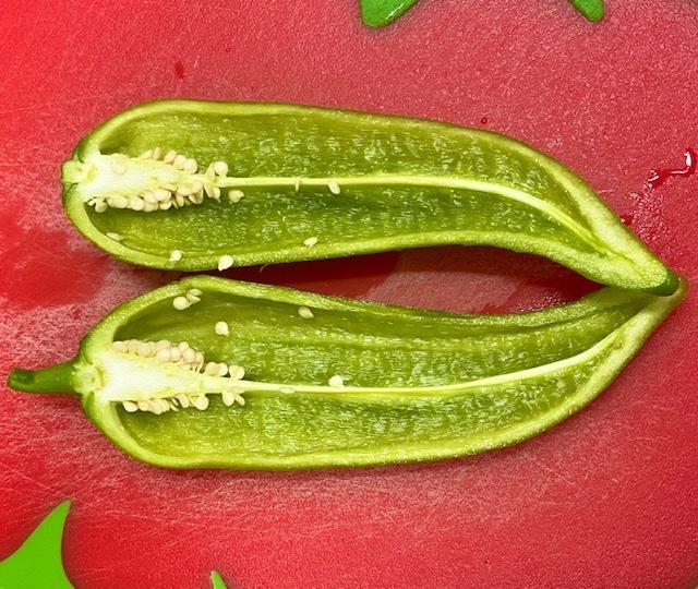 【野菜】激辛の福耳とうがらしの辛味抜き(下ごしらえ)_c0331246_11373082.jpg