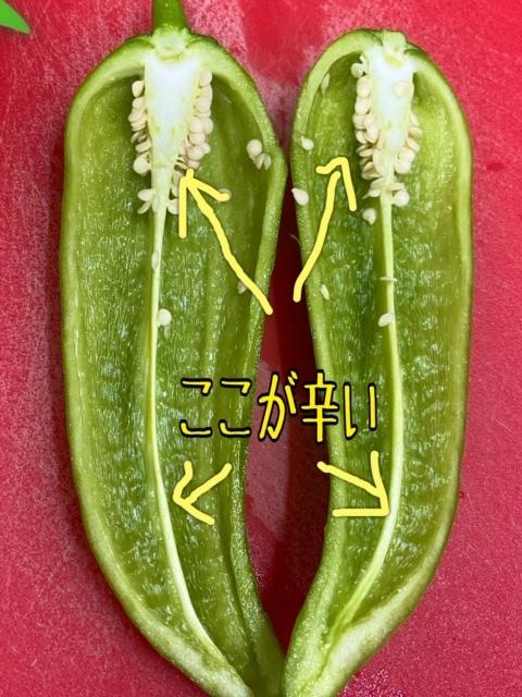 【野菜】激辛の福耳とうがらしの辛味抜き(下ごしらえ)_c0331246_11380674.jpg