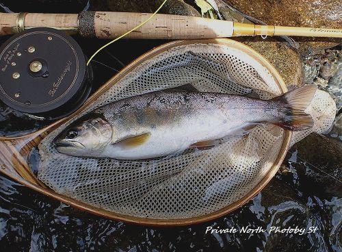 昨日の釣り_d0261148_16575606.jpg