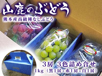 高級種なしぶどう令和2年も大好評販売中!美味しいぶどうを食べたい方、最高級ぶどうを送りたい方必見!!_a0254656_16474200.jpg