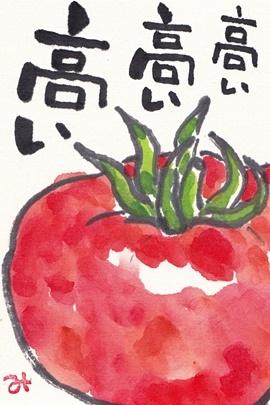 野菜が高い_b0140270_07084189.jpg