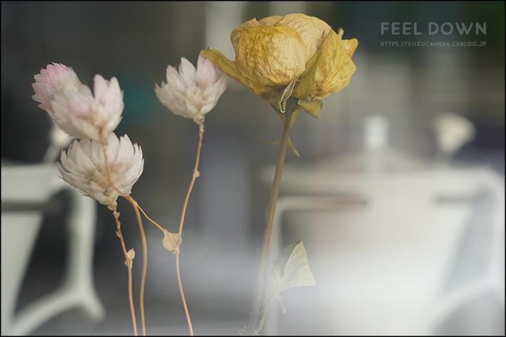 Feel down_f0100215_23121352.jpg