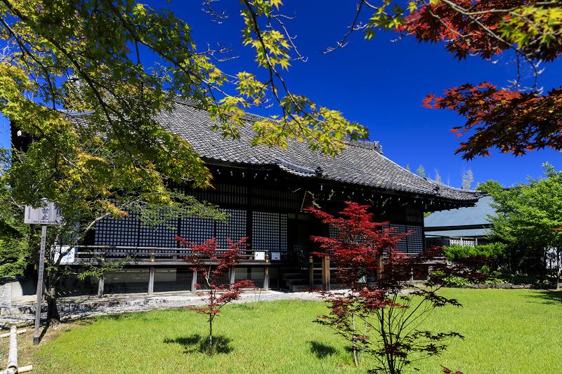 夏の花咲く勧修寺_f0155048_2236865.jpg