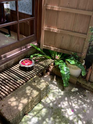 牧志市場と琉球料理ぬちがふう_b0228252_19185146.jpg