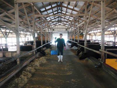 熊本県産の黒毛和牛を100%のハンバーグステーキ!全国のお客様に向け本日初出荷しました!_a0254656_18364197.jpg