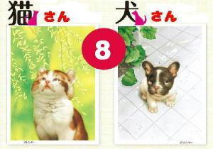 《 8月の 猫さん・犬さん 》_c0328479_13125340.jpg