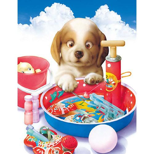 《 8月の 猫さん・犬さん 》_c0328479_13133622.jpg