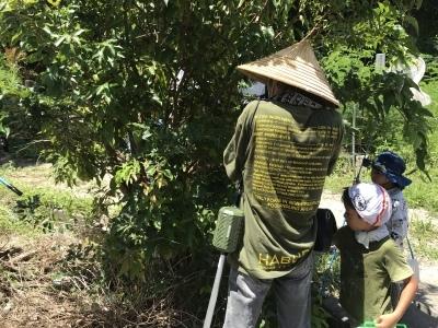昆虫観察ウォーキング〜タマムシを見に行こう〜無事終了しました_a0247891_10441467.jpeg