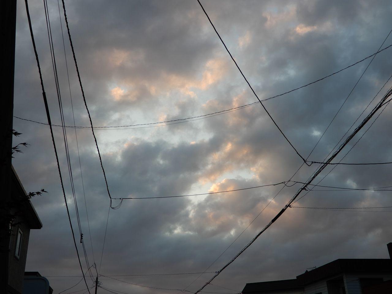 北海道の夏_c0025115_23202388.jpg