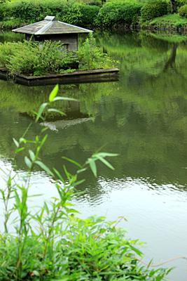 photo lesson - 薬師池公園_c0311715_16244829.jpg