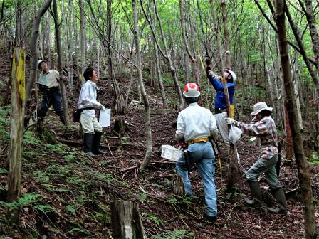 みんなの森活動日記_d0105723_13365309.jpg