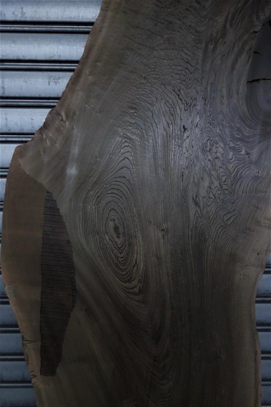 神代欅(新潟県産)一枚板 NO.4_e0156341_07205890.jpg
