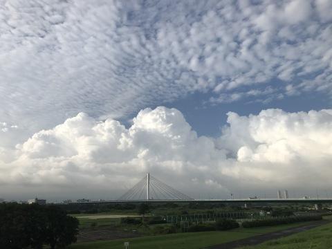 夏の雲 清荒神まんじゅう_b0176192_11181245.jpg