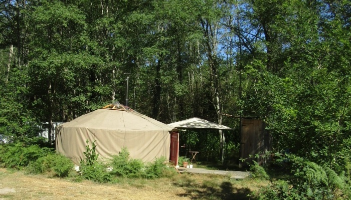 森の中のゲル(モンゴルの家屋)_b0287748_03533305.jpg
