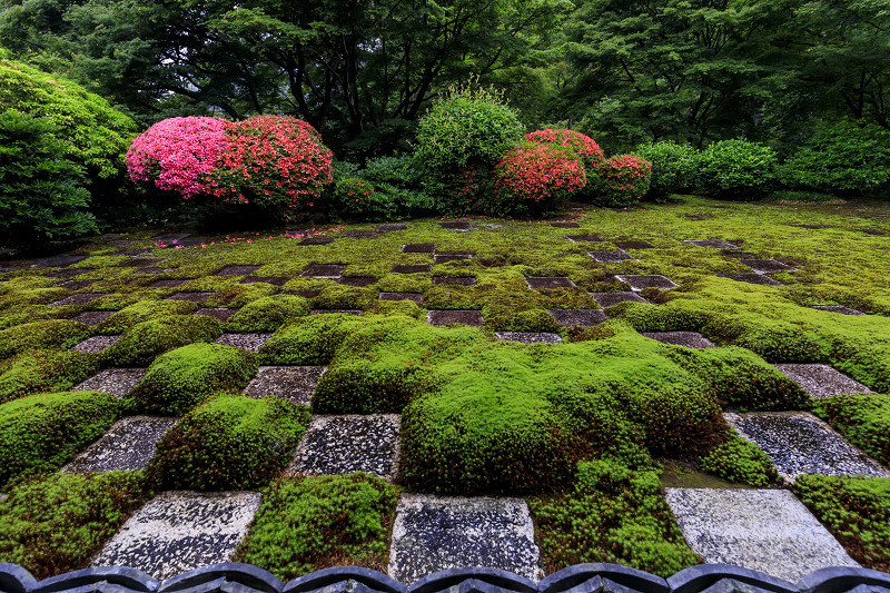 東福寺方丈庭園「八相の庭」のサツキたち_f0155048_2205385.jpg