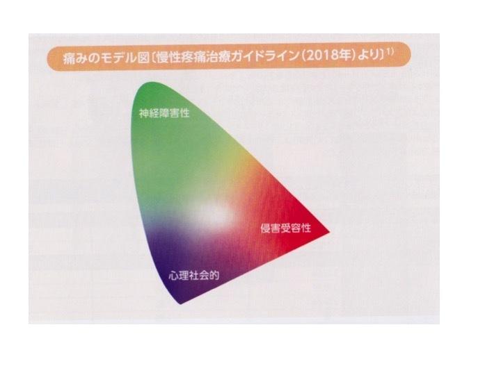 心理・社会的要素が大きいほど痛みが強く長引く傾向=痛み行動_b0052170_00422468.jpg