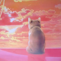 《 8月の 思い出 猫さん 》_c0328479_14184623.jpg