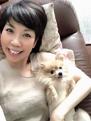 HOGO犬ひらり♡避妊手術後の抜糸でした。_f0249610_20292393.jpeg