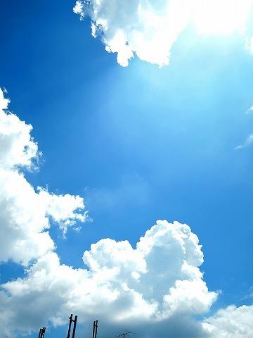 夏が来た!_c0062832_16125772.jpg