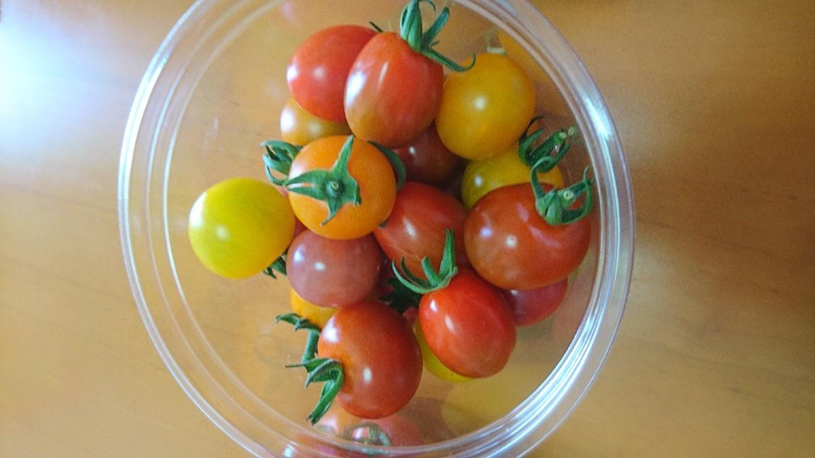 収穫、ミニトマト_b0106766_19512216.jpg