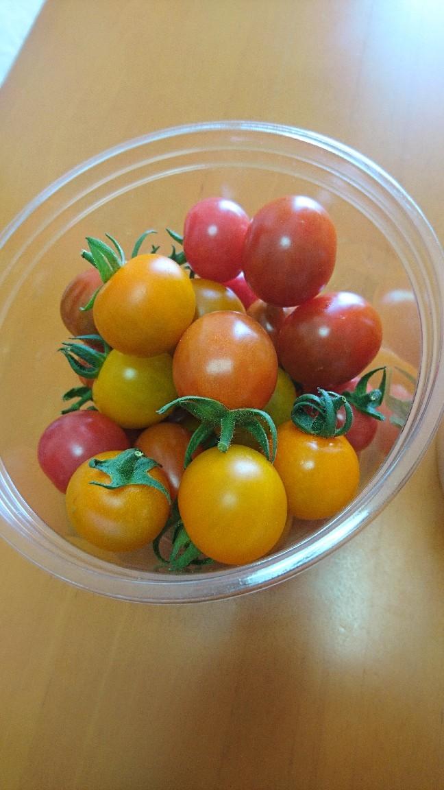 収穫、ミニトマト_b0106766_19512235.jpg