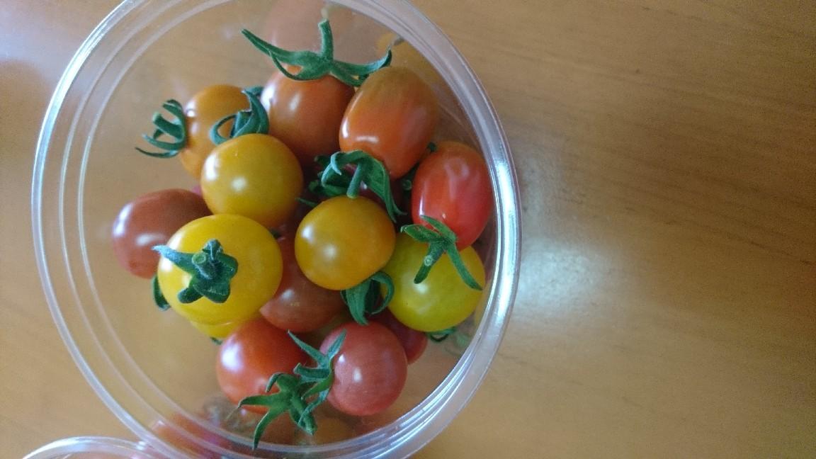 収穫、ミニトマト_b0106766_19512244.jpg