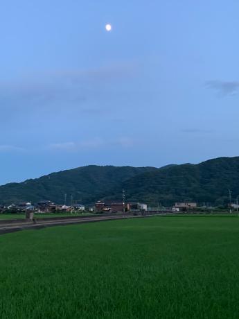 やっと梅雨明けしたね_a0077071_16245755.jpg