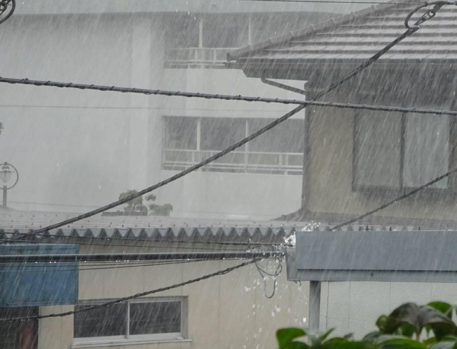 突然の大雨_f0059673_14335417.jpg