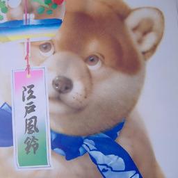 《 村松 誠 8月の犬さん 》_c0328479_14172420.jpg