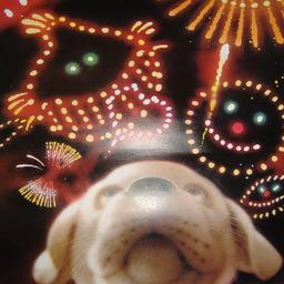 《 村松 誠 8月の犬さん 》_c0328479_14174016.jpg