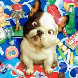 《 村松 誠 8月の犬さん 》_c0328479_14181148.jpg