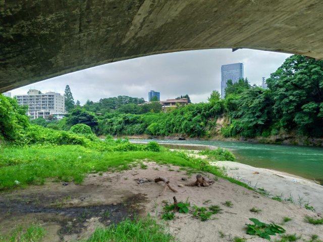 霊屋橋の下から撮ってみる@広瀬川_f0100593_18305612.jpg