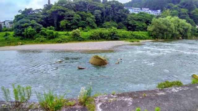 仙台も梅雨明けしました!_f0100593_18325704.jpg