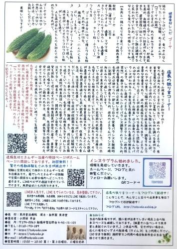 東洋堂新聞8月号本日より配布中です。_d0142498_10372241.jpeg
