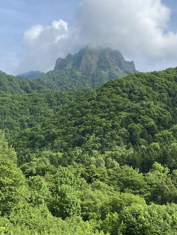 """2020年6月 『花の名山、定山渓天狗岳そして夕張岳へ』 June 2020 \""""Floral Mountains\""""_c0219616_12313164.jpg"""