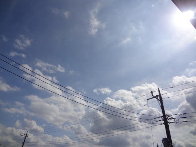梅雨明け_f0375930_14385550.jpg