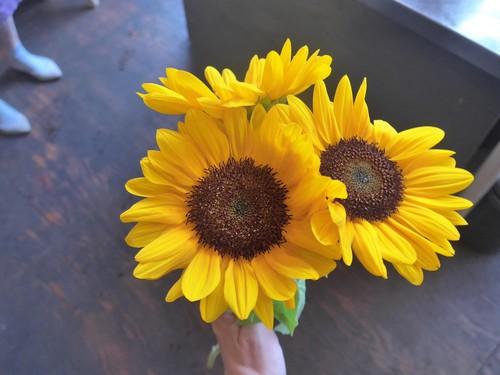 花修行~「鮨 波やし」さんの2020年8月のお花~_f0232060_11451575.jpg