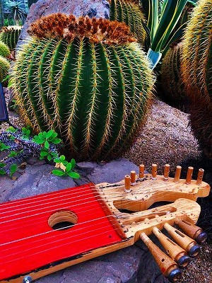 サボテンの中に飾る現代楽器、予告_f0203094_13065655.jpg