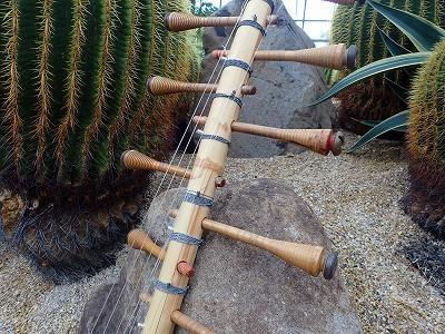 サボテンの中に飾る現代楽器、予告_f0203094_13355764.jpg