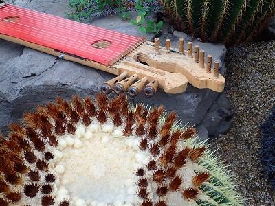 サボテンの中に飾る現代楽器、予告_f0203094_13380938.jpg