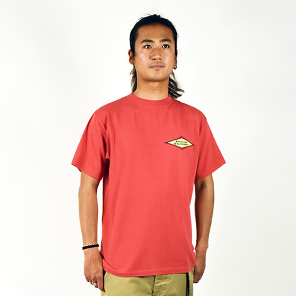【DELIVERY】 STANDARD CALIFORNIA - Classic Surf Logo T_a0076701_16511643.jpg