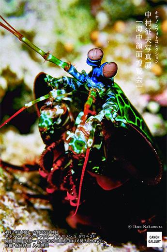 中村征夫氏 写真展「海中顔面博覧会」_b0187229_14155174.jpg