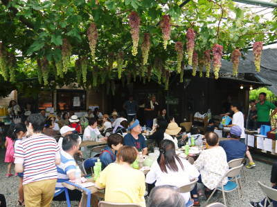 熊本ぶどう 社方園 高級種なしぶどうを大好評販売中!令和2年の社方園の「ぶどう祭り」は中止です!_a0254656_17553143.jpg