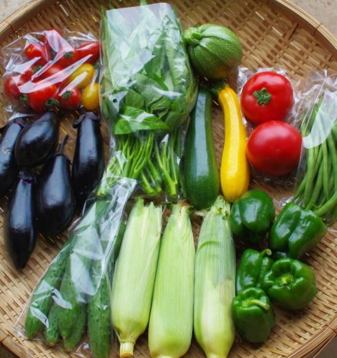 今週の野菜セット(8/4~8/8着)_c0110869_12452128.jpg