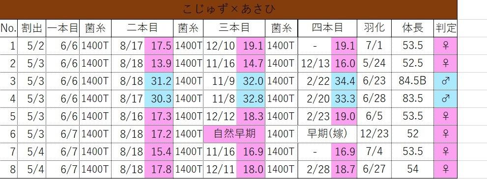 2019年組管理表_d0048194_20113591.jpg