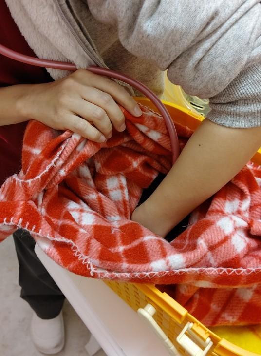 キレ子、ワクチン後に不調( ;;) /    おみこし、ムティアン服用中の近況_e0144012_14582800.jpg